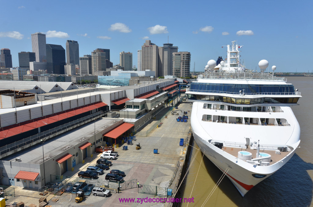 Carnival Cruise New Orleans Tumblr  Punchaoscom
